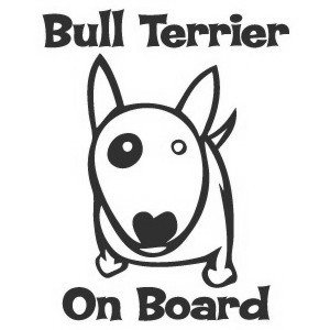 Bullterrier on board