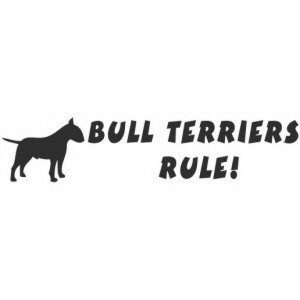 Bullterriers rule